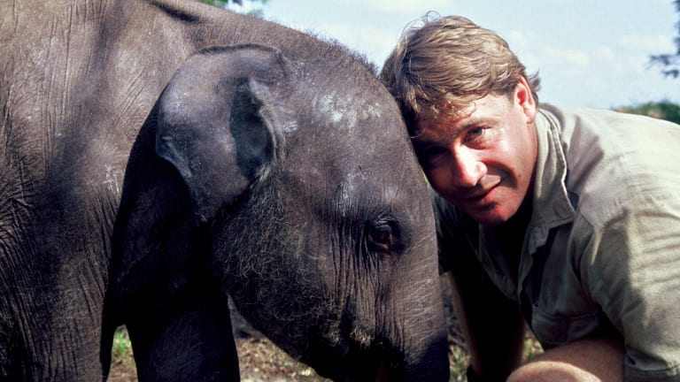 Steve Irwin: The Devastating Death of 'The Crocodile Hunter'