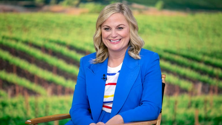 10 Things You May Not Know About Amy Poehler