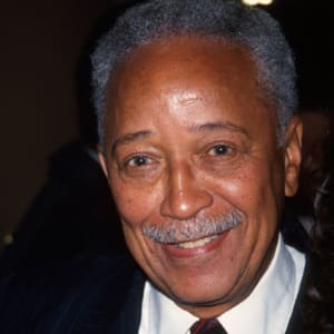 14+ David Dinkins Wife