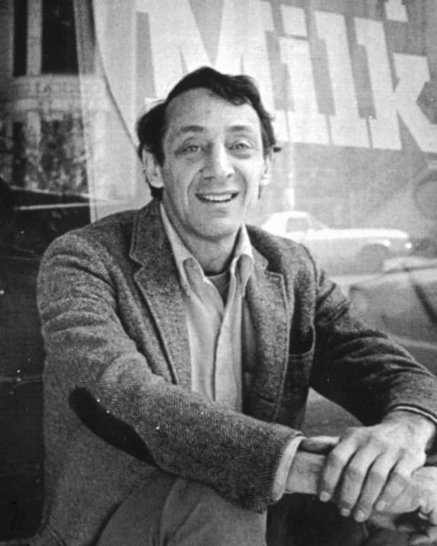 Harvey Milk Photo