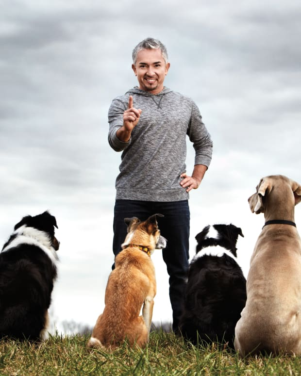 Cesar Millan National Geographic Channel Photo