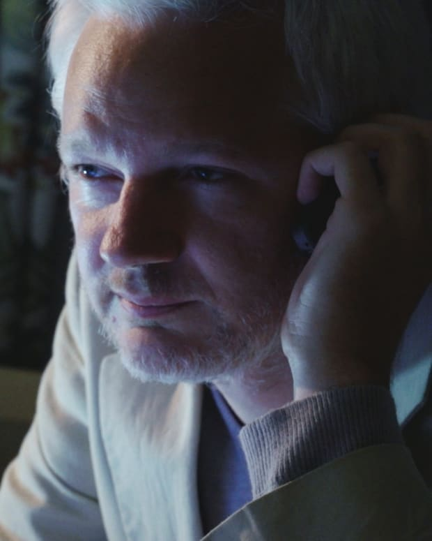 Julian Assange in 'Risk'