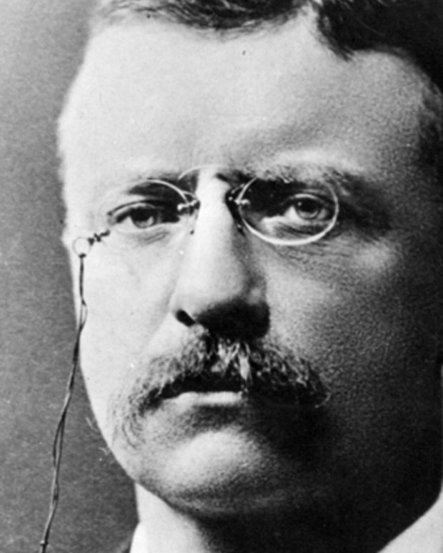 Theodore Roosevelt - Mini Biography