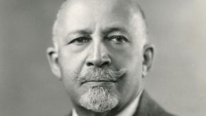 w e b du bois biography w e b du bois mini biography