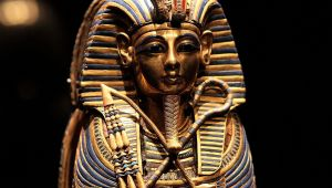 The Murder of King Tut   Hachette Book Group
