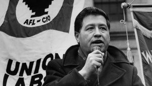 cesar chavez activist biography cesar chavez mini biography