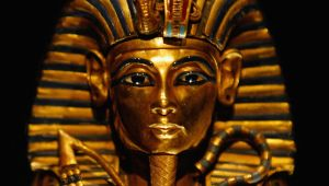 who killed king tut essay The mystery of king tut's death essay 1099 words aug 26th, 2013 5 pages show more the mystery of king tut's death the mystery of king tut's death if you ask the average american to name an egyptian king ninety nine percent of the time they will spout out the name king tutankhamun or king tut for short with out.