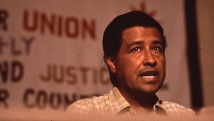 Cesar Chavez - Working for Freedom