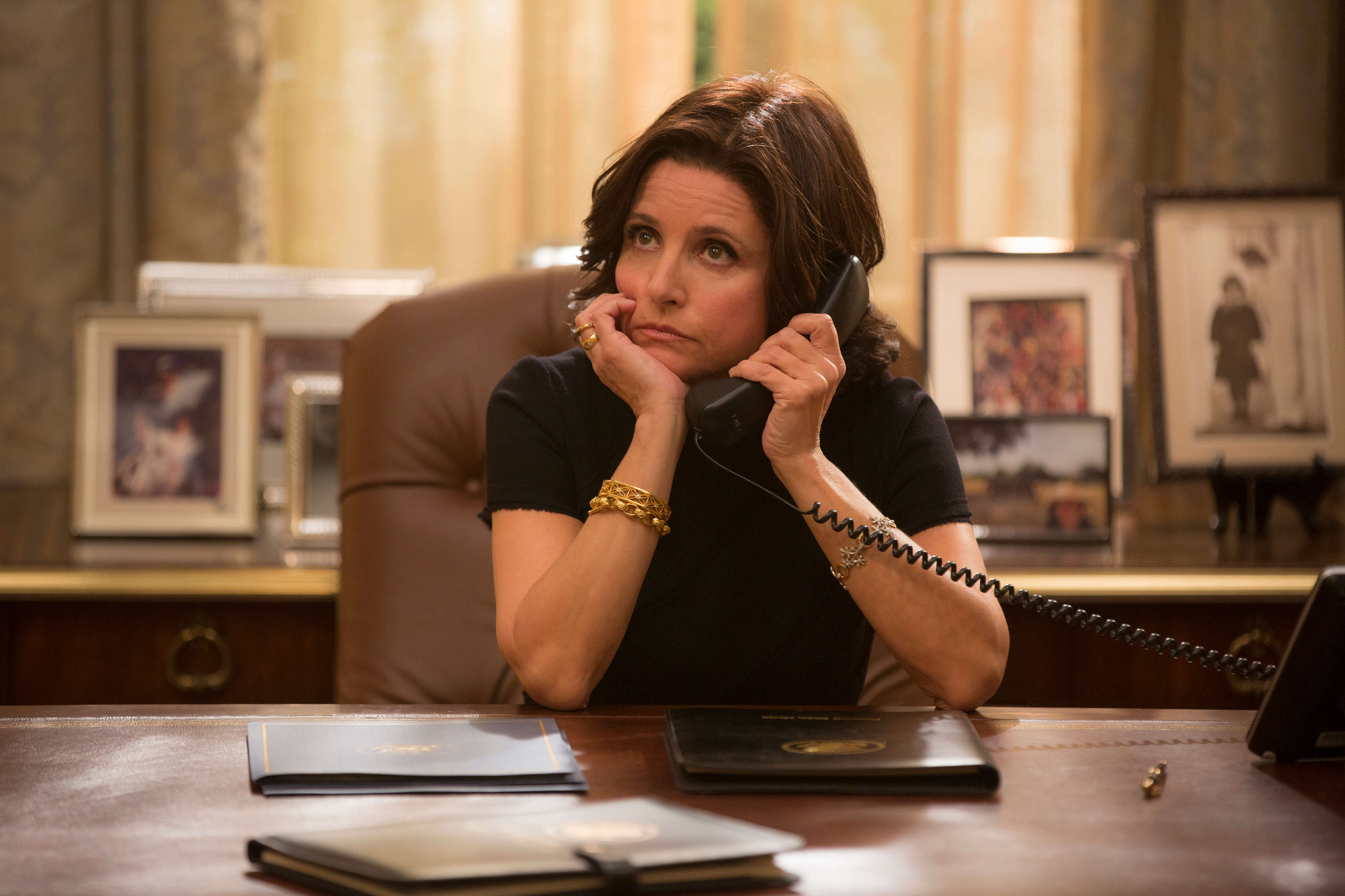 Julia Louis-Dreyfus VEEP Photo