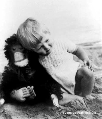 baby jane and chimp doll.jpg