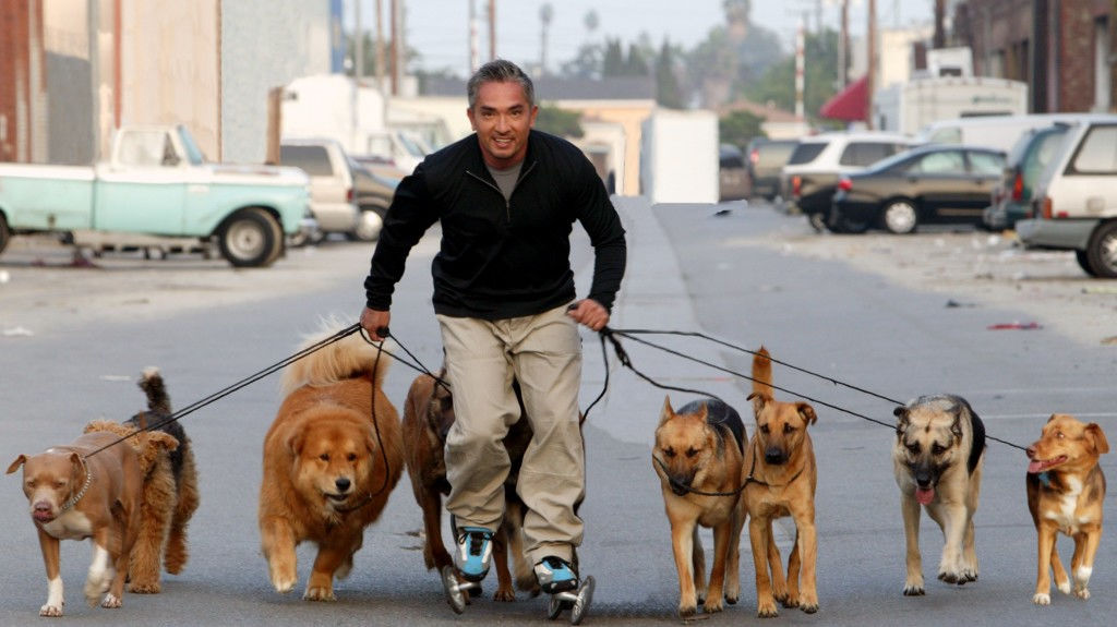 Cesar Millan Photo