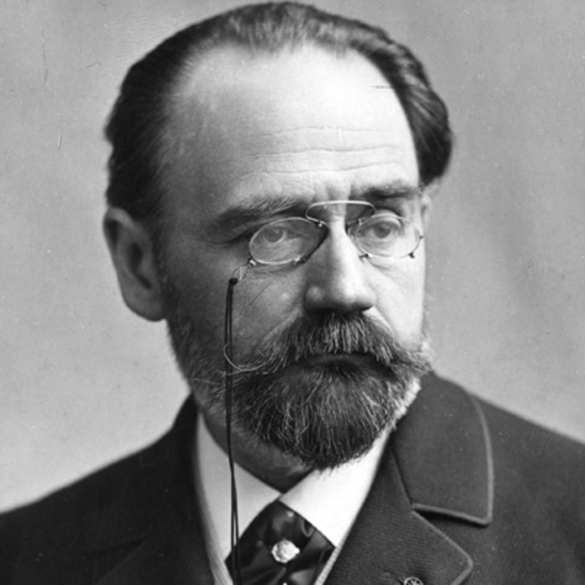 emily zola Discover librarian-selected research resources on emile zola from the questia  online library, including full-text online books, academic journals, magazines,.