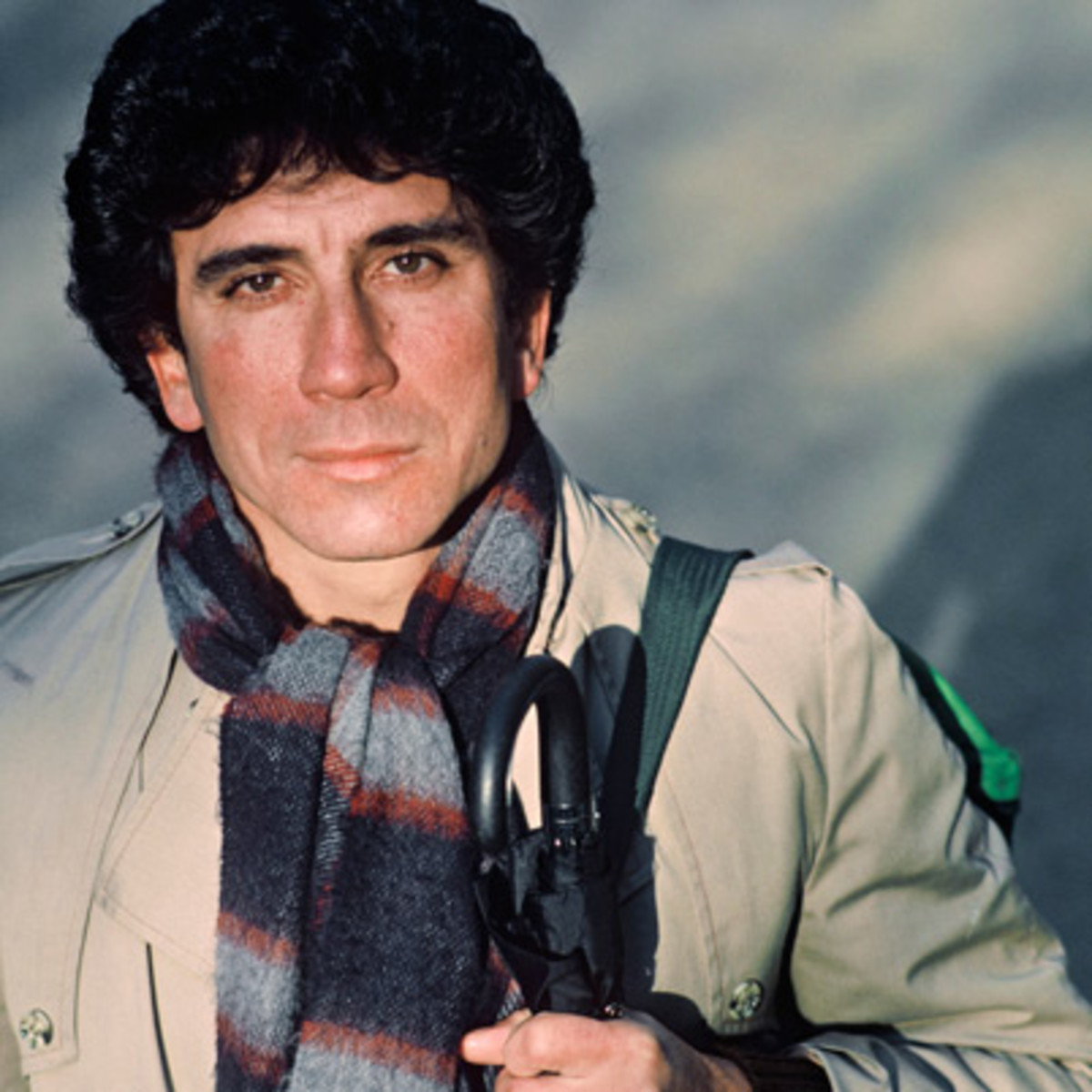 reinaldo arenas essay This website is maintained by ann tashi slater.