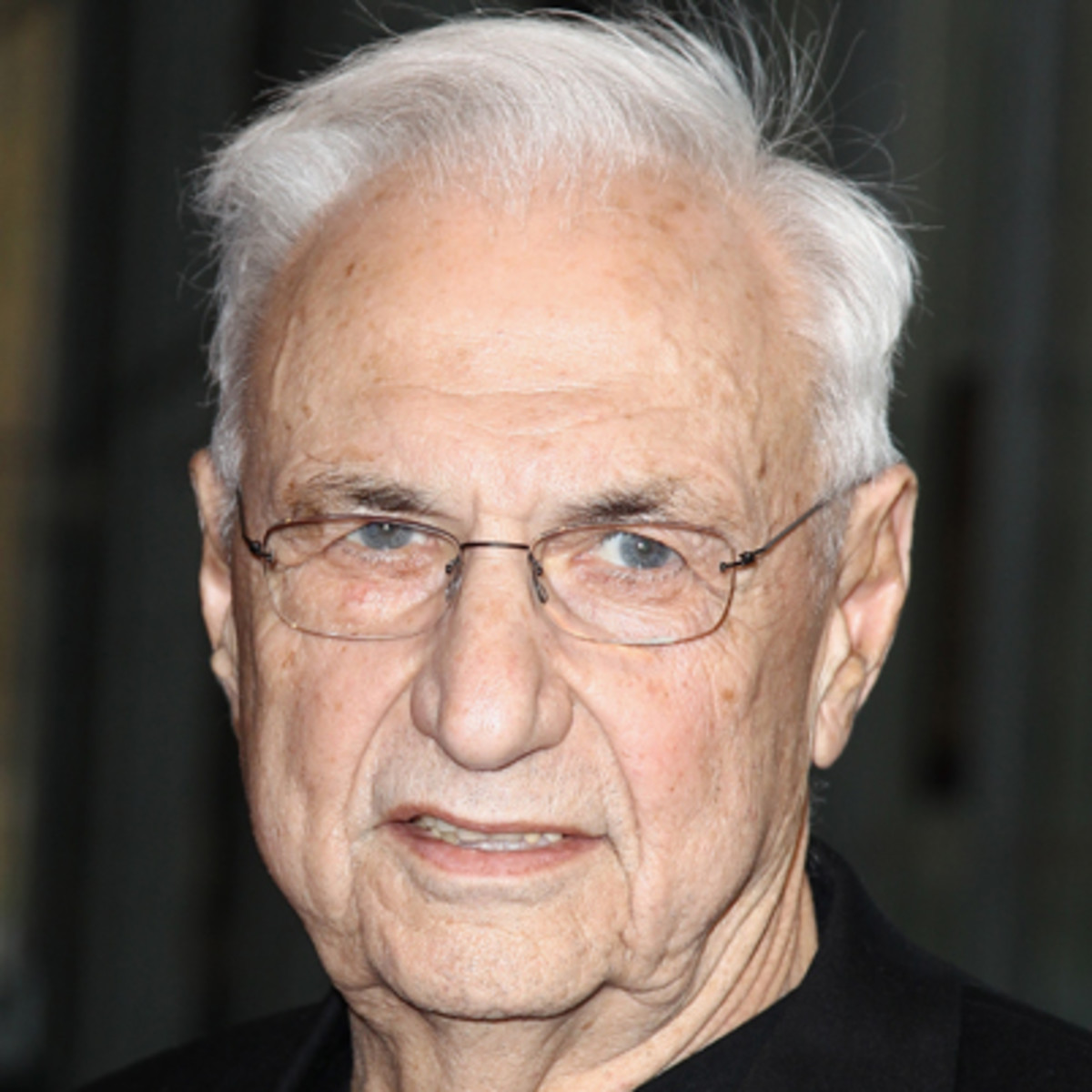 Berta Isabel Aguilera frank gehry - architect - biography