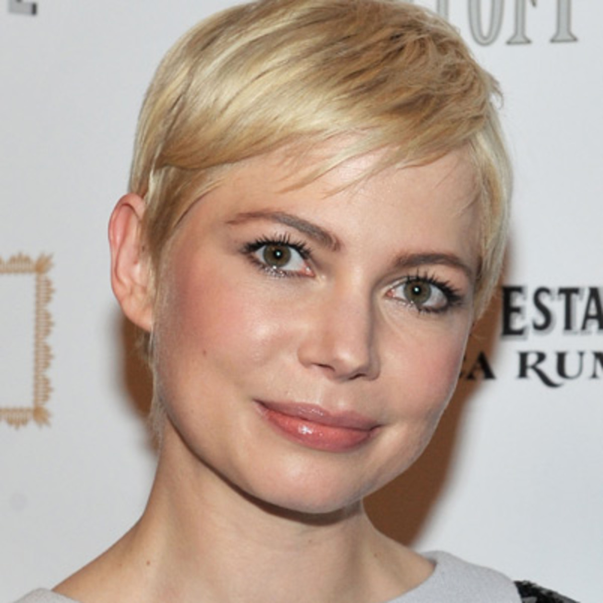 Michelle Williams Theater Actress Television Actress