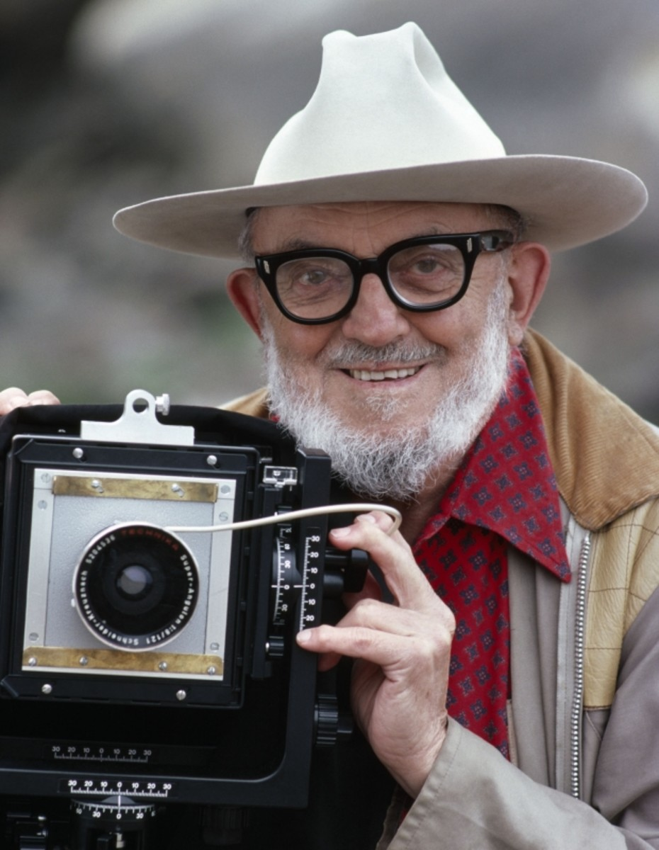 Ansel Adams with his large format camera in Point Lobos, California. (September 3, 1979) (Getty)
