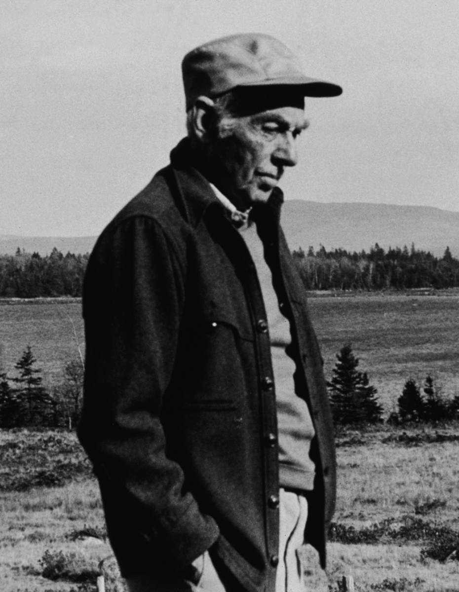 Author E.B. White standing on his farmland home in North Brooklyn, Maine. December 29, 1977 (Getty)