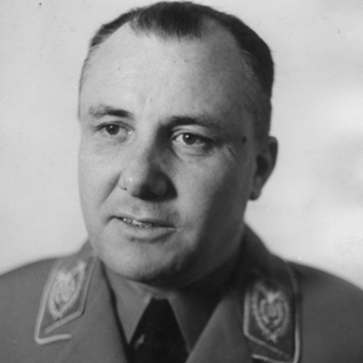 """an examination of the role of josef mengel in the holocaust during world war ii From the 1950s through the '80s, the mossad strove to find the most wanted nazi war criminal, dr josef mengele, the """"angel of death"""" who conducted sadistic medical experiments on jewish prisoners at auschwitz the hunt for mengele, which included scenes that would impress a thriller screenwriter."""