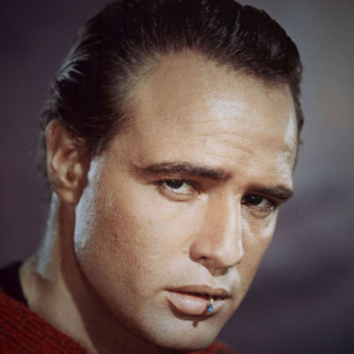 paos de brando single guys Get the full list of all marlon brando movies see who they starred with and what they are working on now.