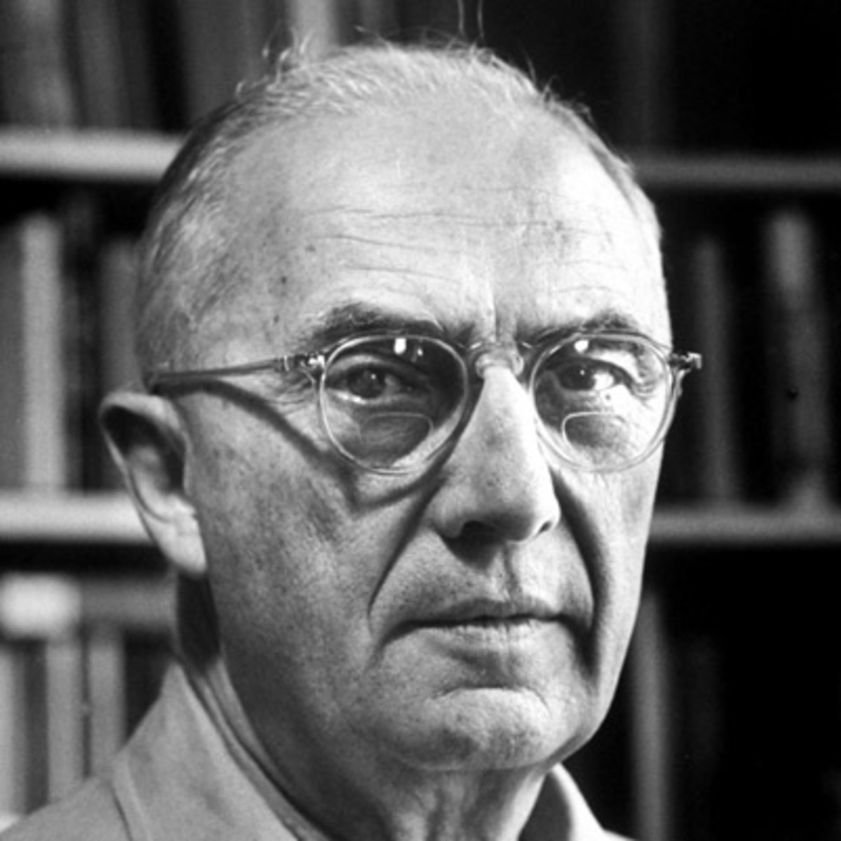 """william carlos williams the artistic poet Williams again expresses his admiration for brueghel's concern """"with it all"""", for the older artist's inclusive, comprehensive engagement with the world this from the poet who wrote of wheelbarrows and cold plums."""