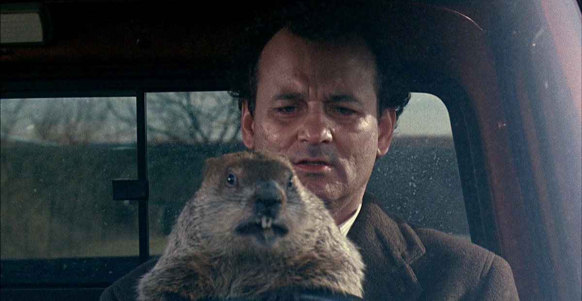 Bill Murray Groundhog Day Photo