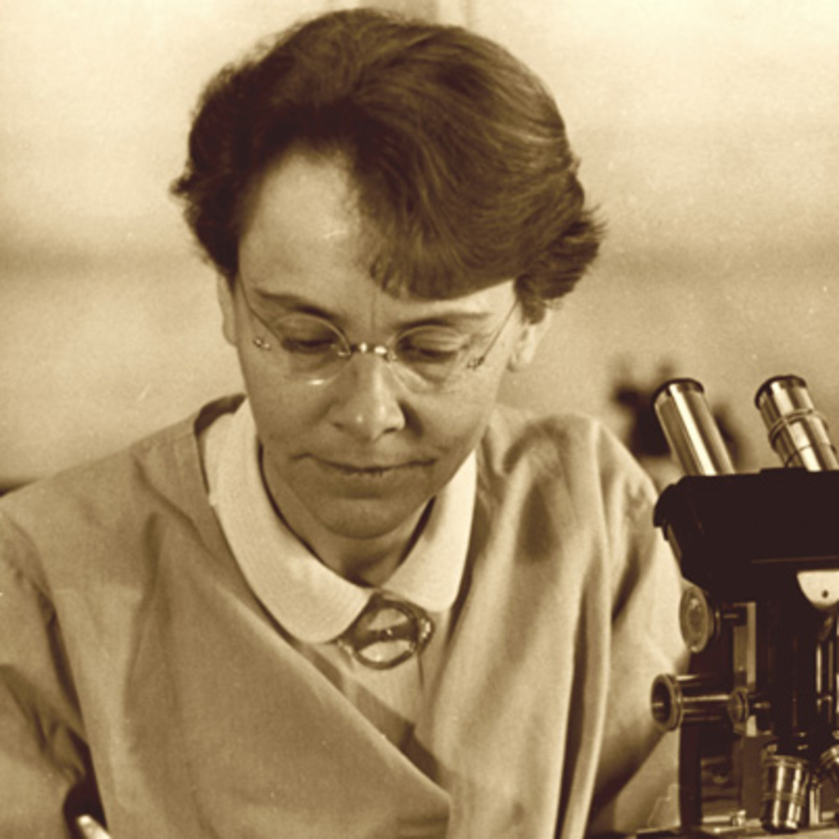 barbara mcclintock s contribution to science Barbara mcclintock discovered jumping genes ,  how does barbara mcclintock's contribution of science affect your lives she taught us how to twerk.