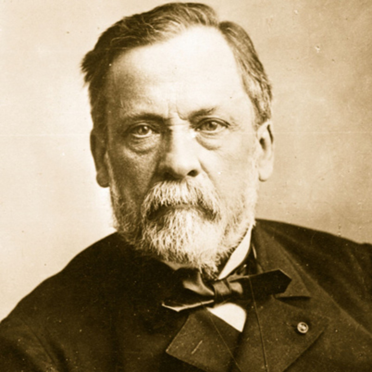 Extrêmement Louis Pasteur - Chemist, Inventor, Scientist - Biography.com QQ78