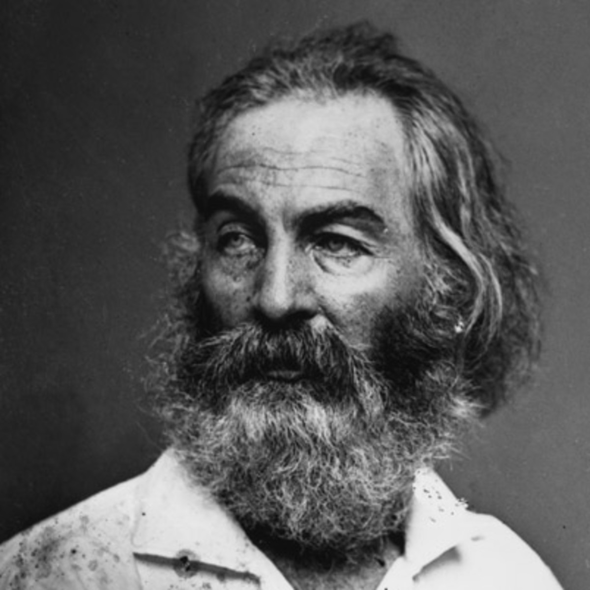 Walt whitman autobiography
