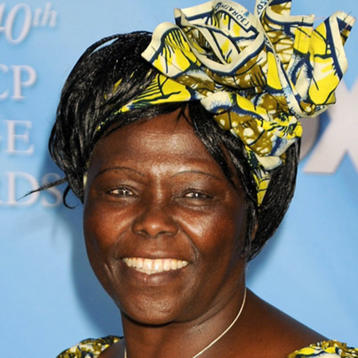 """maathai wangari Part ii of the inspirational and influential women of the world blog series """"some  of our human rights is environmental rights"""" – wangari."""