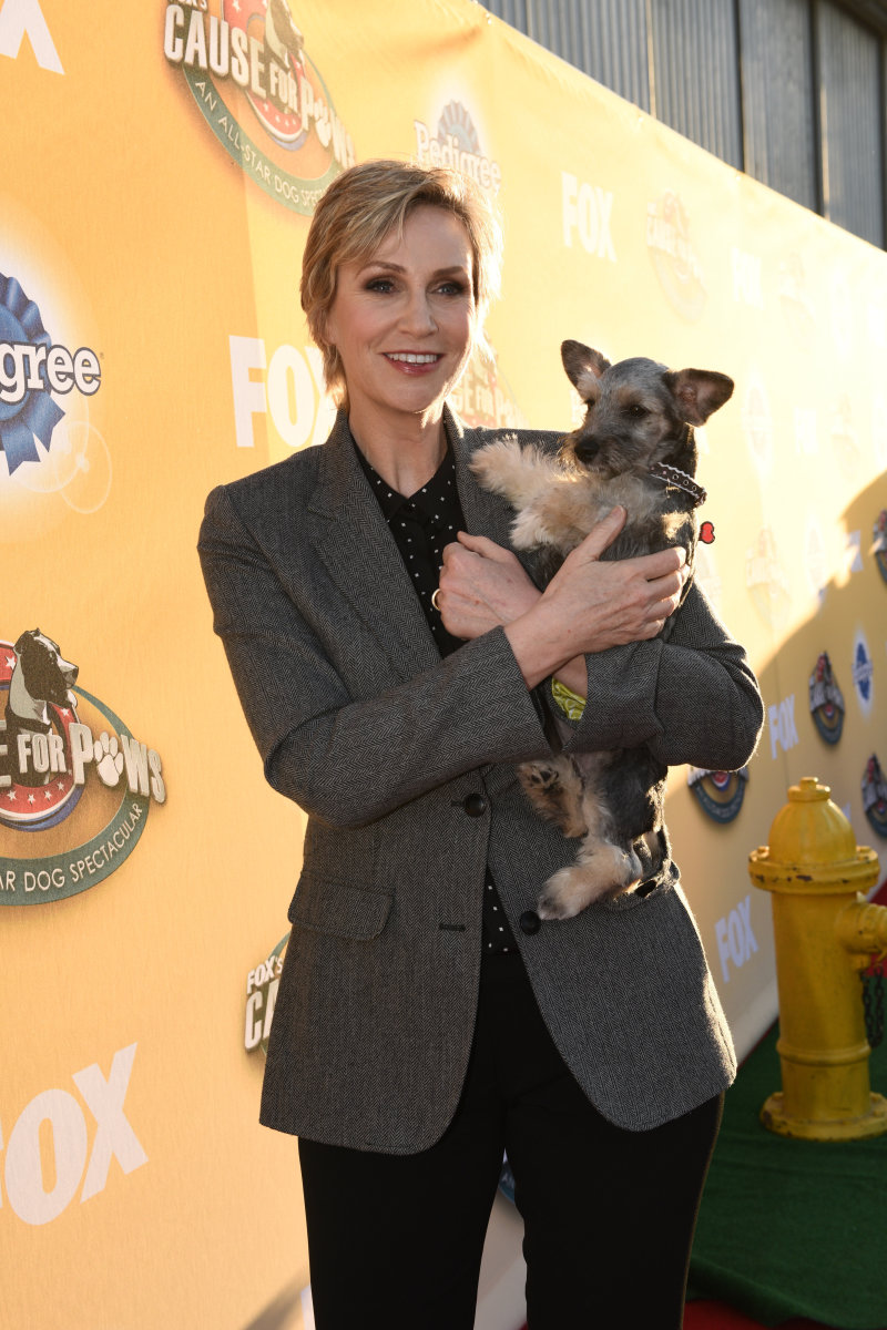Cause for Paws Jane Lynch Photo