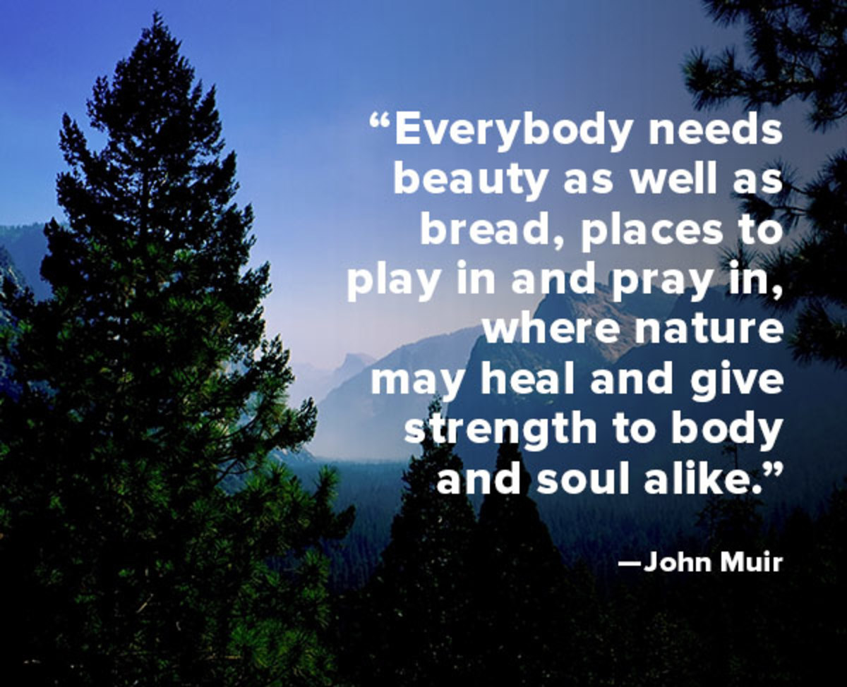 Quote Of The Week John Muir Biography