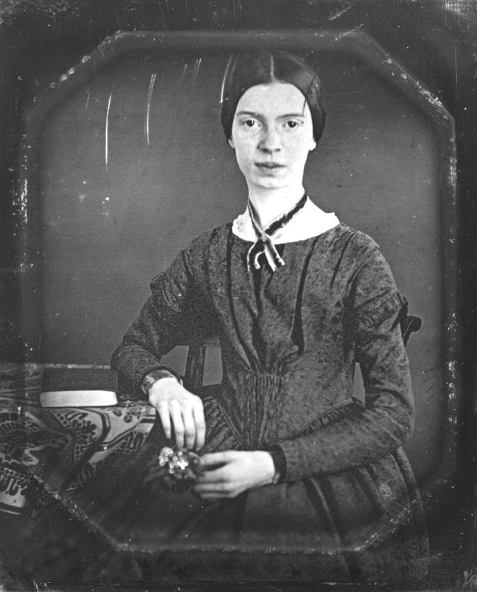 Image result for emily dickinson fun facts