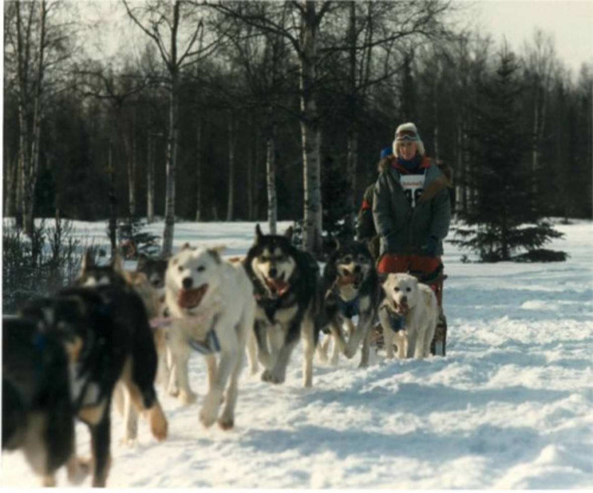 Libby Riddles sled dog musher