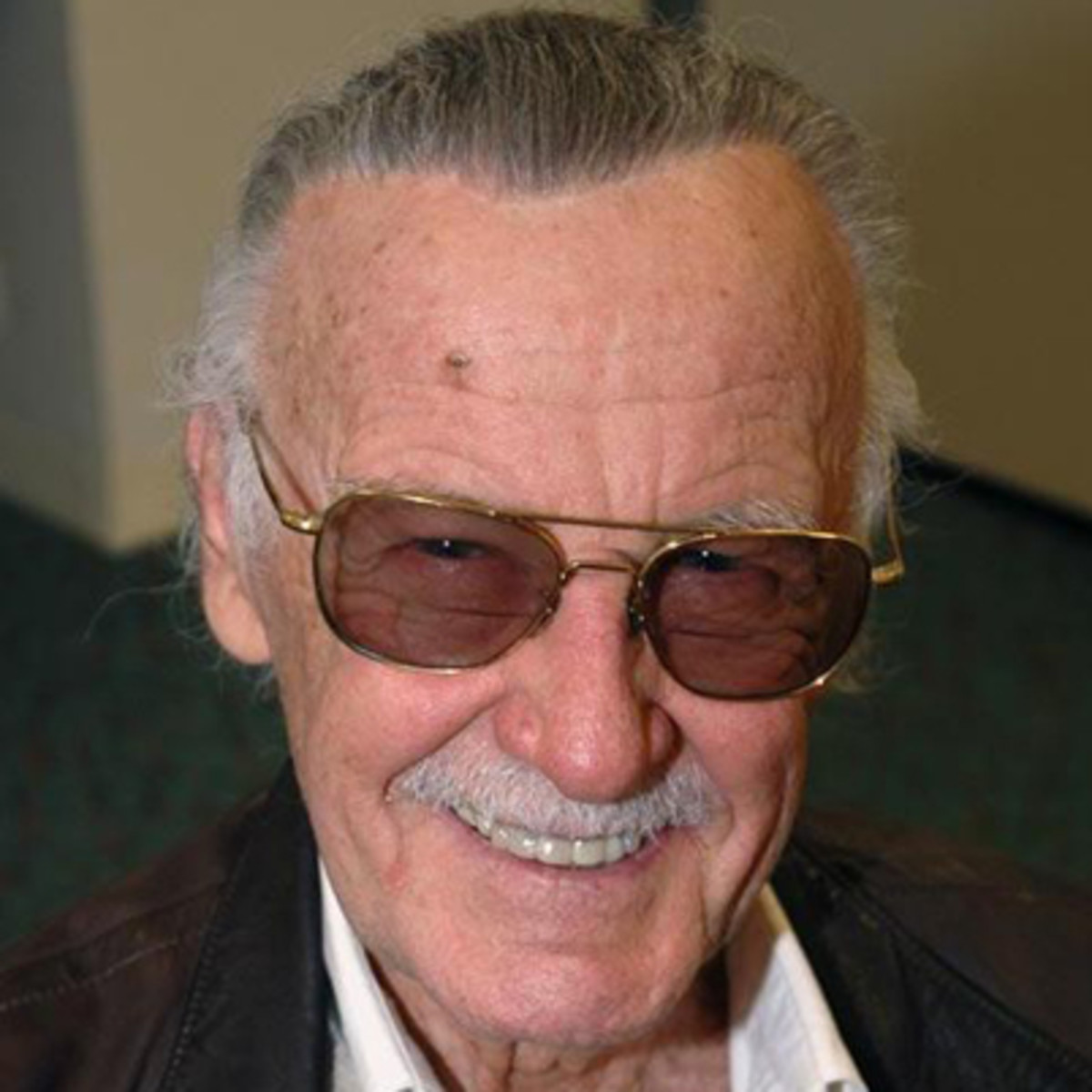 Famous People Named Ava for stan lee - television producer, producer, author, editor