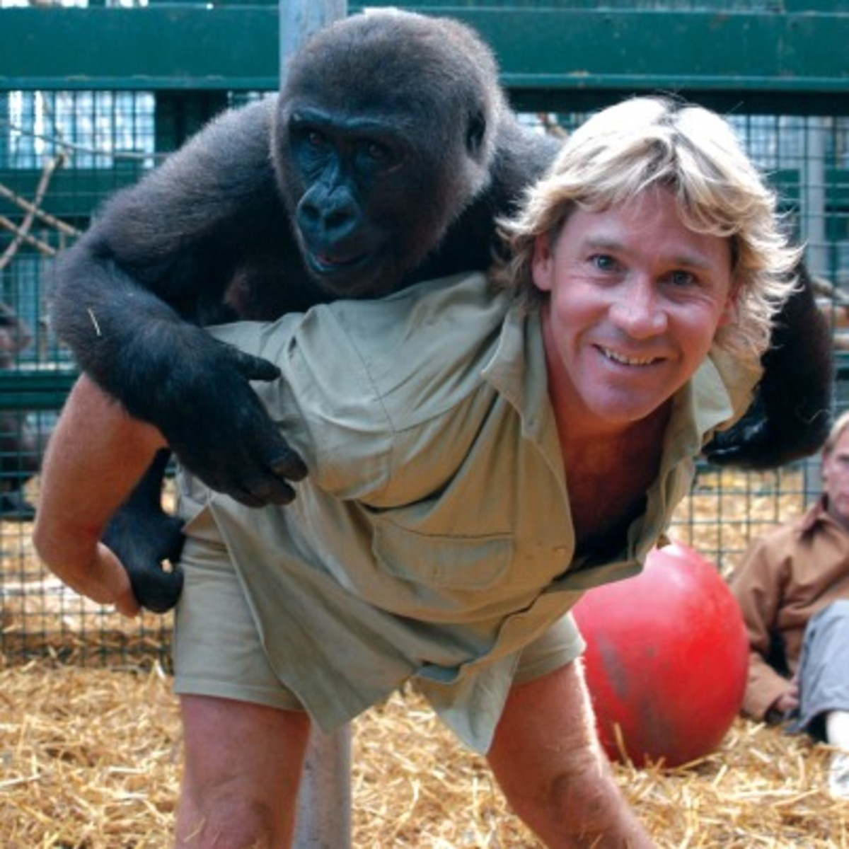 steve irwin - photo #17
