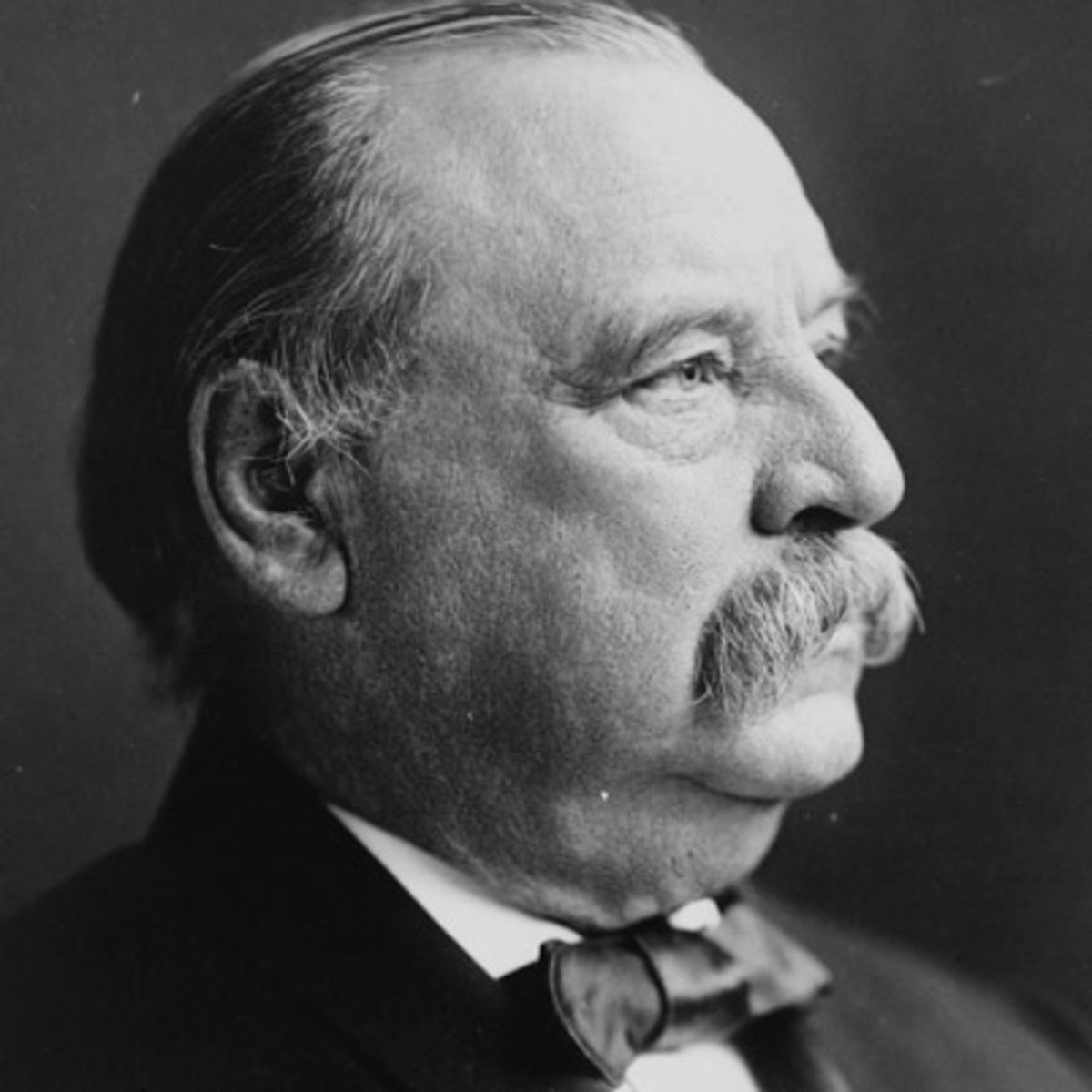 grover cleveland resource 1 essay