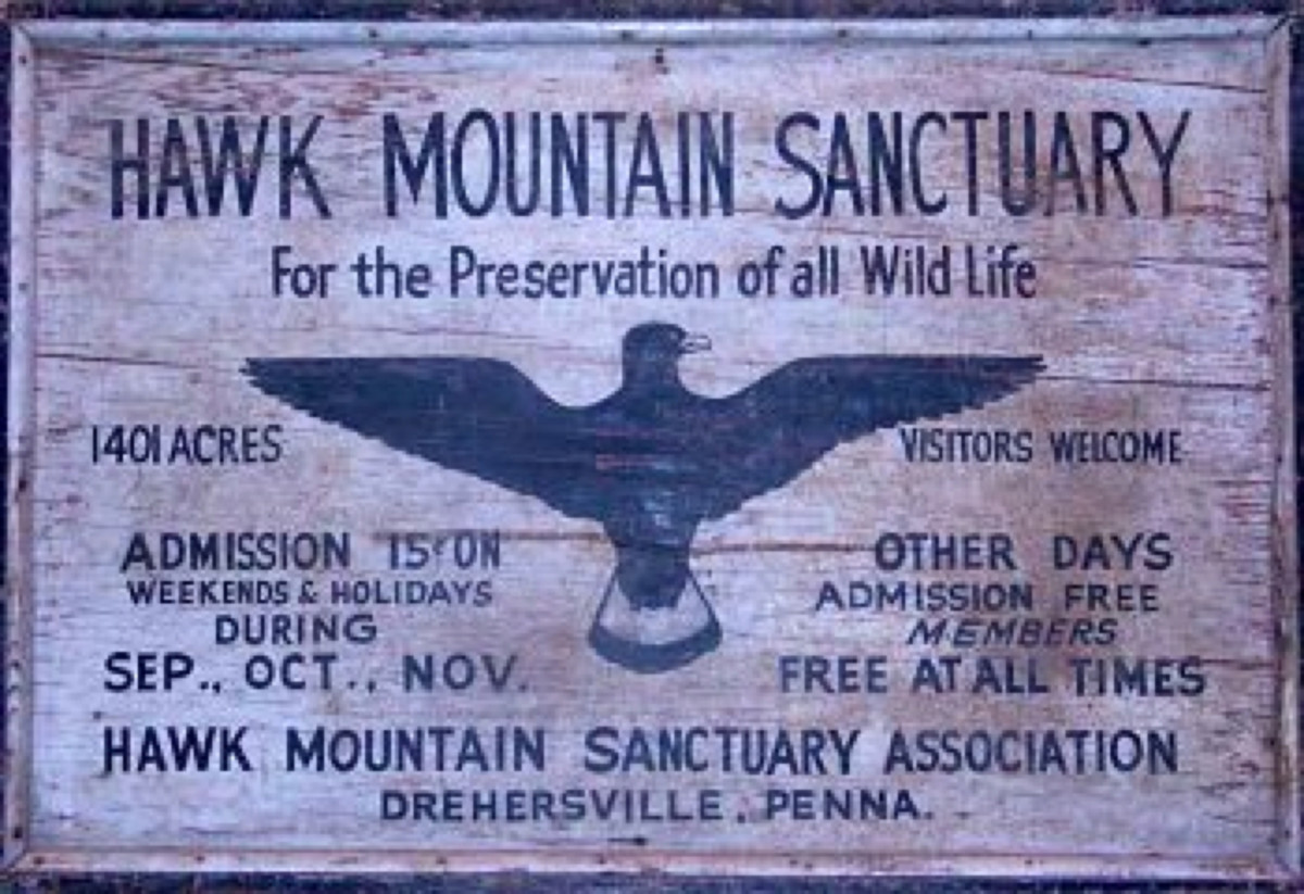 Hawk Mountain Sanctuary Photo