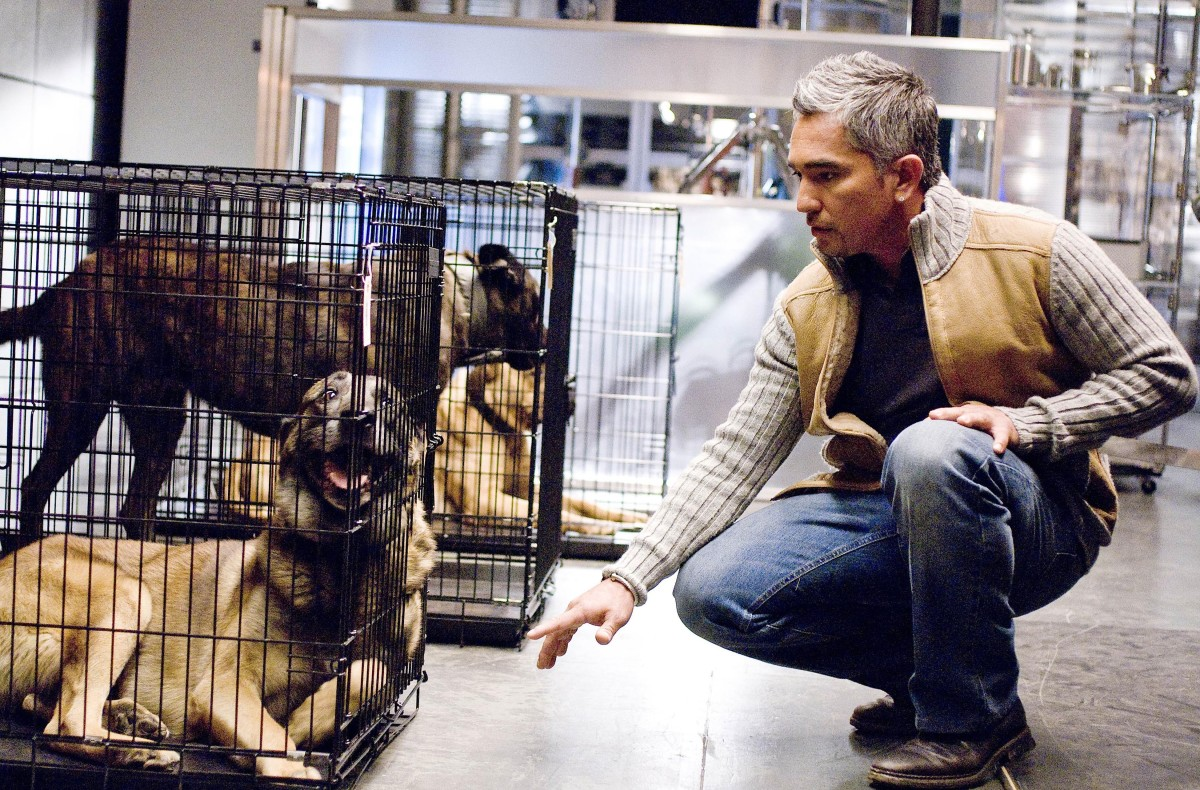 Cesar Millan Bones Photo