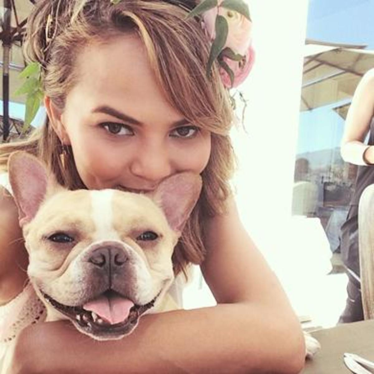 Chrissy Teigen French Bulldog Instagram Photo
