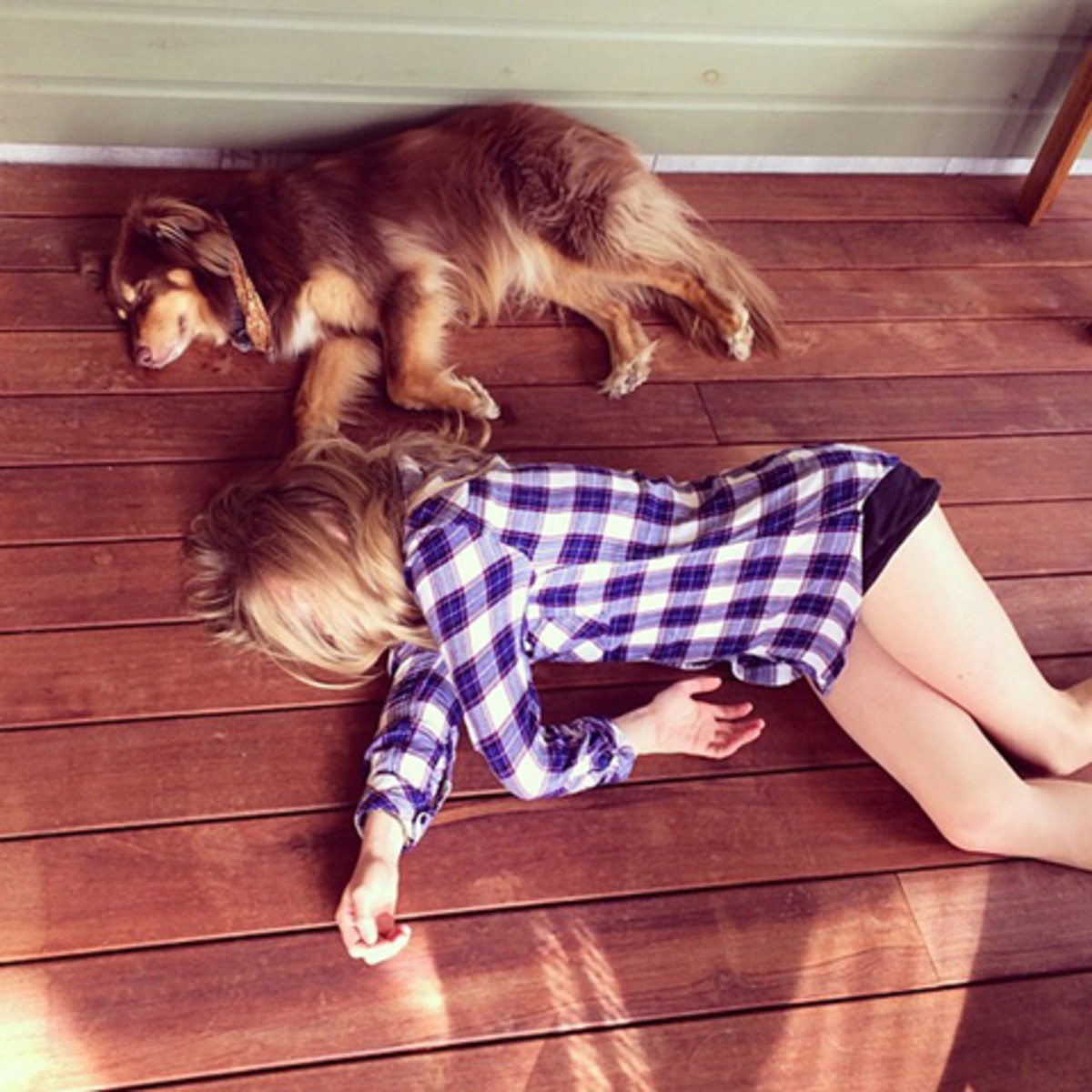 Amanda Seyfried Dog Instagram Photo