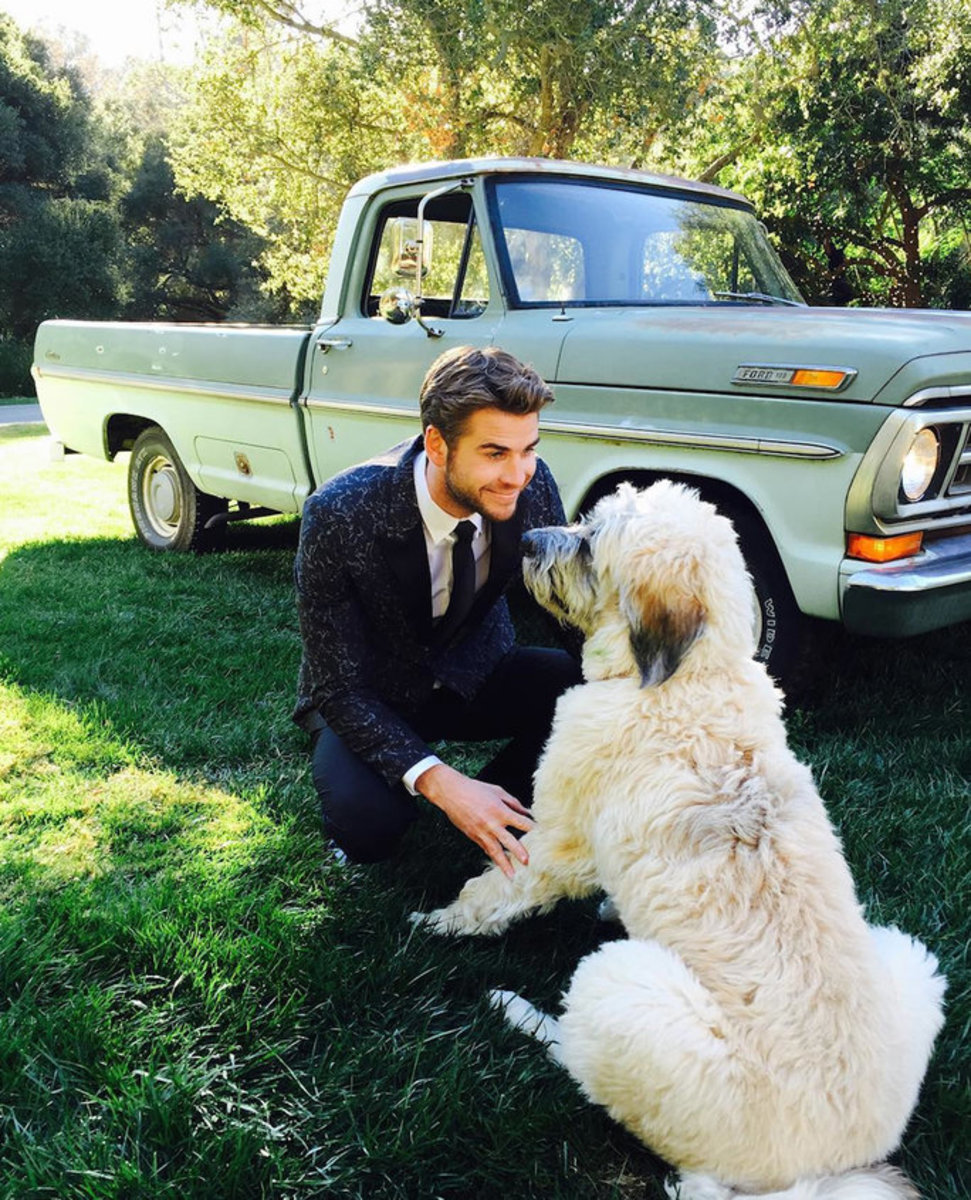 Liam Hemsworth Dog Photo