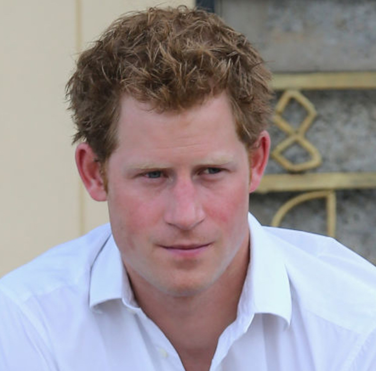 Prince harry prince pilot philanthropist biography geenschuldenfo Gallery