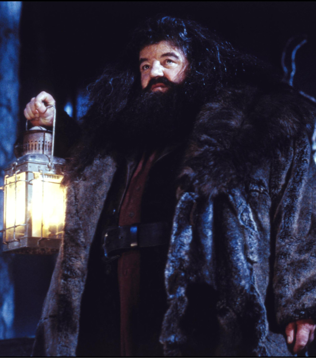 Hagrid Harry Potter Photo